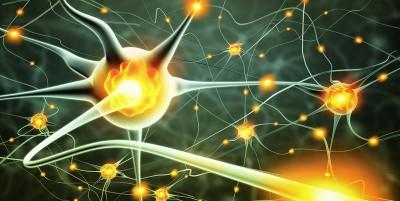 Sclerosi multipla e digiuno intermittente: un possibile aiuto alle terapie