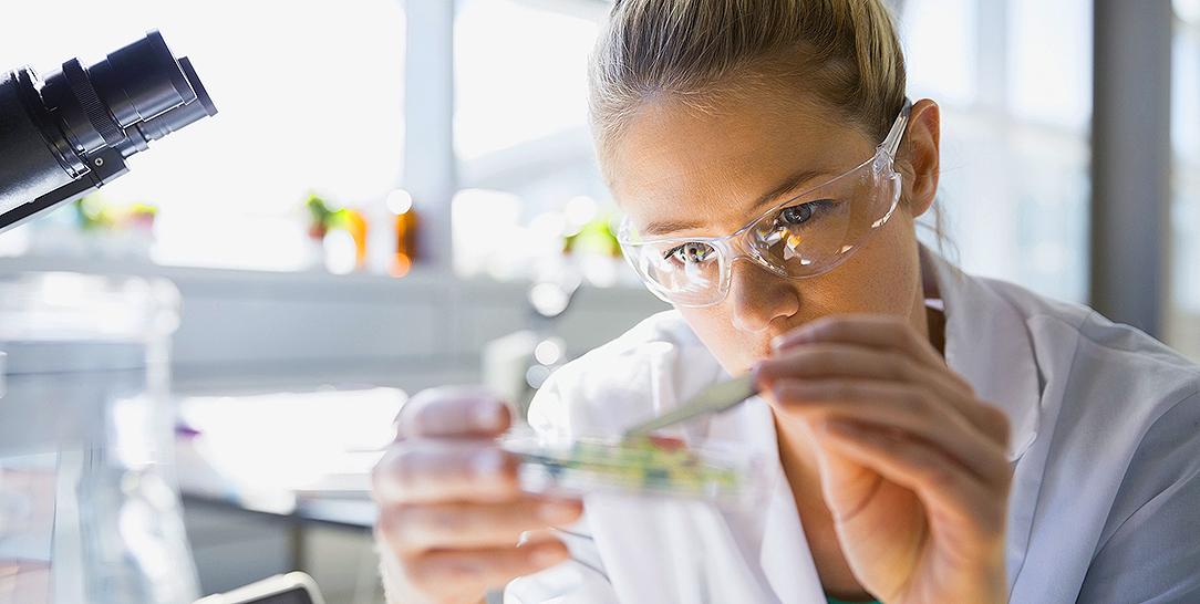 Valutare e capire gli studi scientifici su alimentazione e nutrizione: la piramide delle evidenze scientifiche