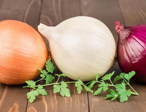 Cipolla: gusto, salute e qualche lacrima