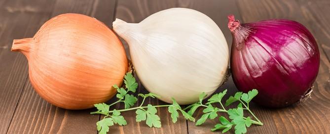 Le proprietà nutritive della cipolla, i valori nutrizionali, i benefici per la salute, le controindicazioni, gli usi in cucina