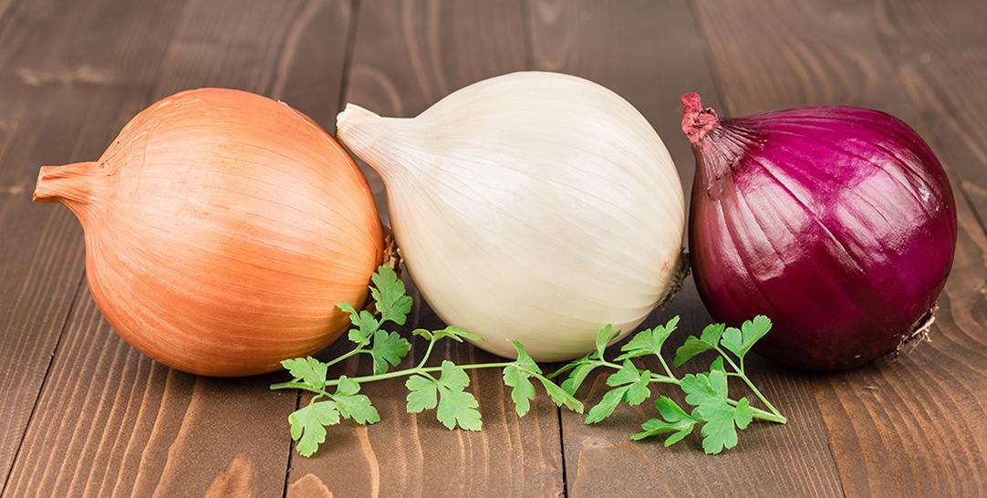 Cipolla, proprietà nutritive, benefici per la salute e controindicazioni