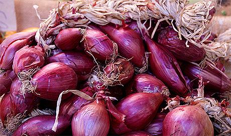 I benefici per la salute della cipolla, la prevenzione e l'uso in cucina