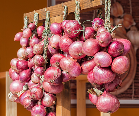 Benefici per la salute e proprietà nutyritive della cipolla