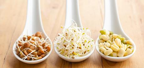 Come ridurre l'acido fitico contenuto negli alimenti