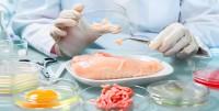 Alimentazione, valutazione del rischio alimentare, additivi, pesticidi e xenobiotici