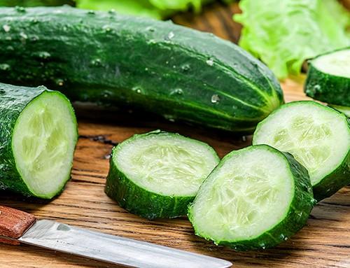 Cetriolo, il gusto verde dell'estate