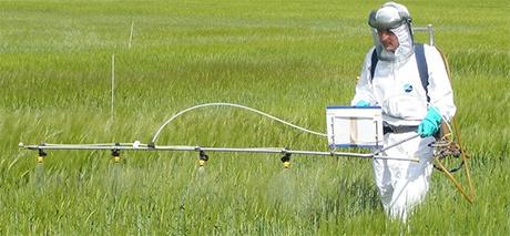 Pesticidi, inquinamento e rischio di cancro. Il test di Ames, il rischio reale e quello percepito