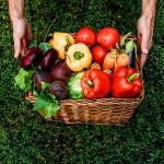 Pesticidi, micronutrienti e cancro: la parola a Bruce Ames
