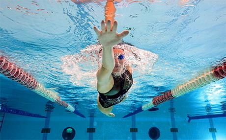 Sistemi energetici muscolari, utilizzo di grassi e carboidrati, alimentazione per lo sport
