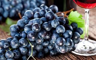 Resveratrolo, proprietà, benefici per la salute e l'invecchiamento, controindicazioni