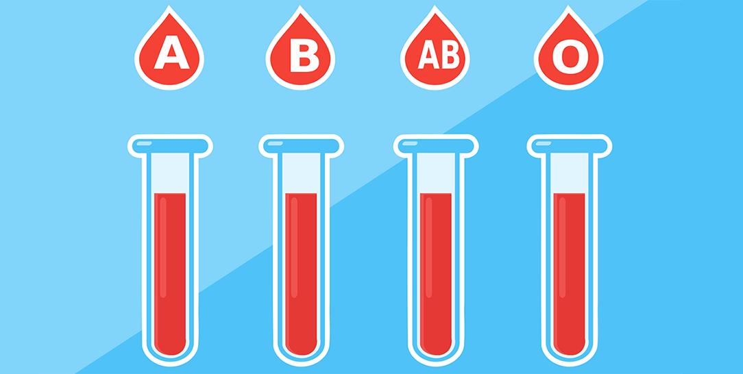 lalimentazione secondo il gruppo sanguigno