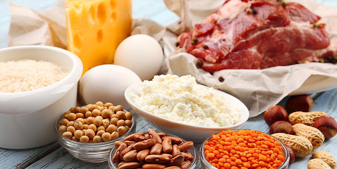 Quali sono le proteine migliori | Nutrizionista Tommasini