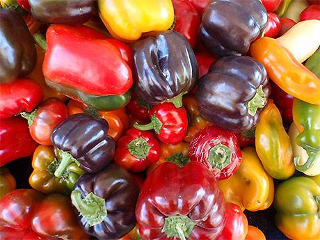 Varietà, valori nutrizionali e proprietà nutritive dei peperoni dolci