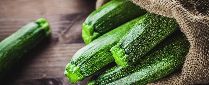 Le proprietà nutritive, i valori nutrizionali usi e ricette delle zucchine, il contenuto di cucurbitacina