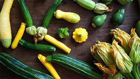 Proprietà nutritive, valori nutrizionali e utilizzo in cucina delle zucchine estive